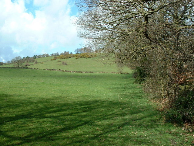 Fields next to Carr Wood
