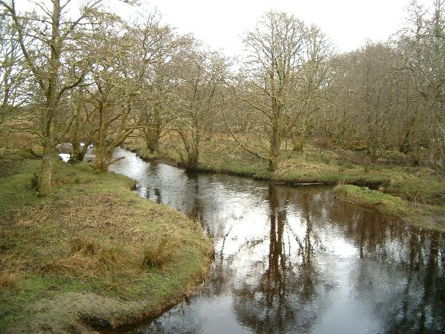 Kilmartin River in woodland
