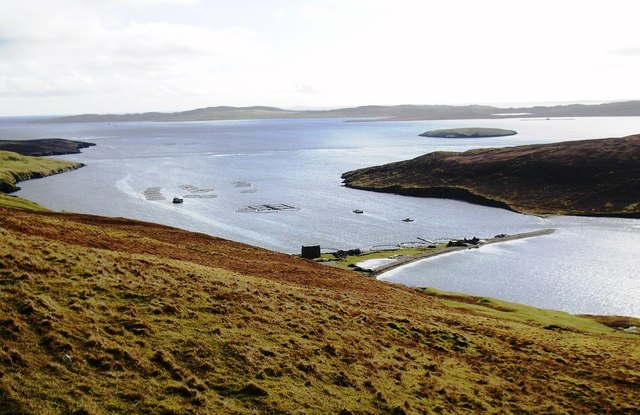 Fish Cages at Swinister Voe, Shetland