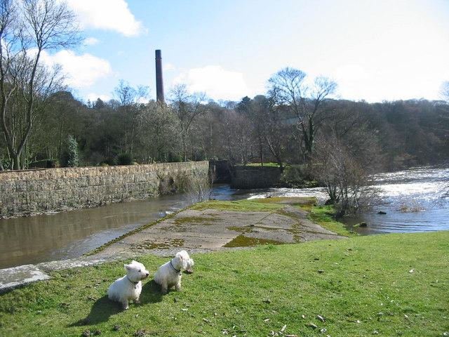 Peckwash Paper Mill on the Derwent