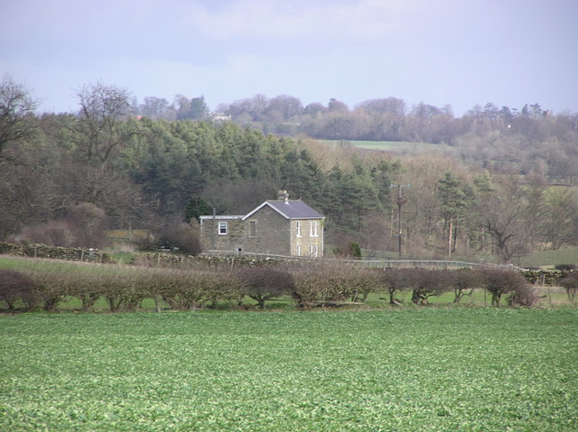 Low Fields  Farm