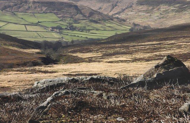 Clough Gill - Westerdale Moor