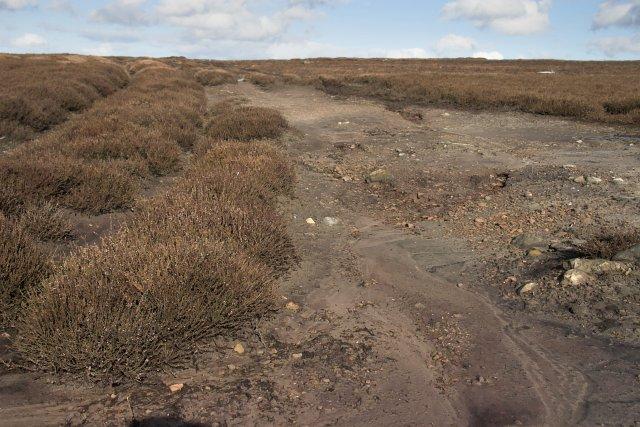 Moorland erosion