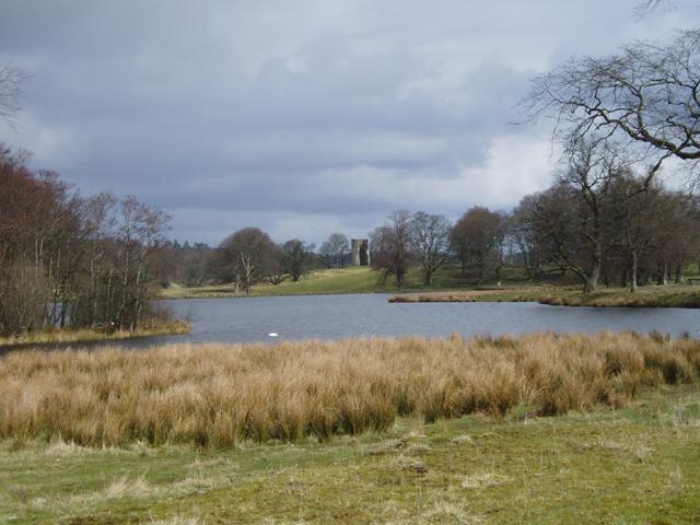 Douglas Castle Parkland