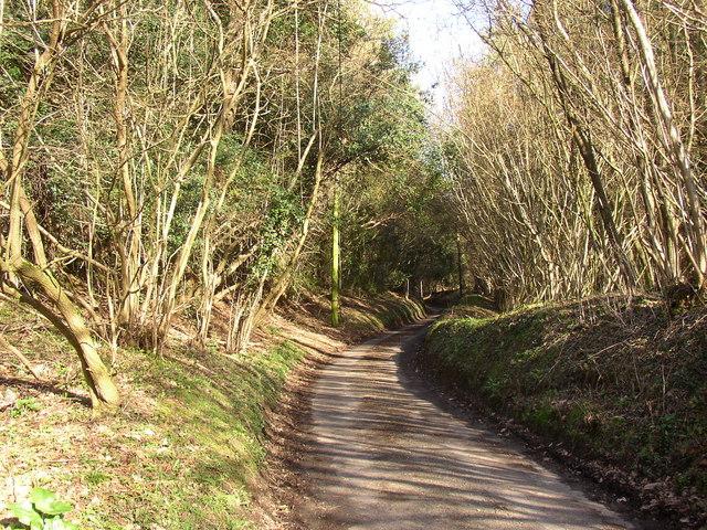 Mare Lane, Hascombe