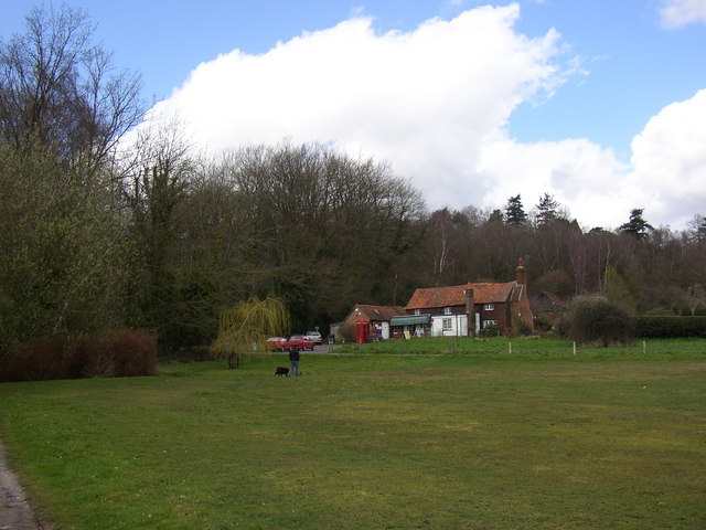 Village green and shop, Hambledon