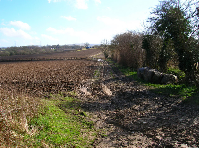 Muddy field, Furners Lane