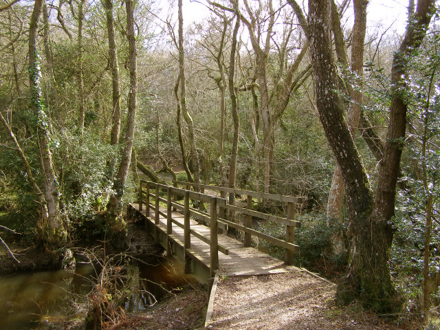 Footbridge over Shepton Water near Honey Hill, New Forest