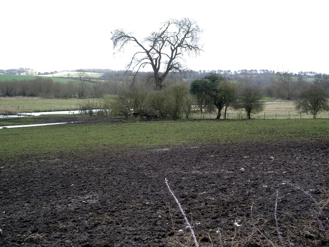 Test Valley, south of Longstock