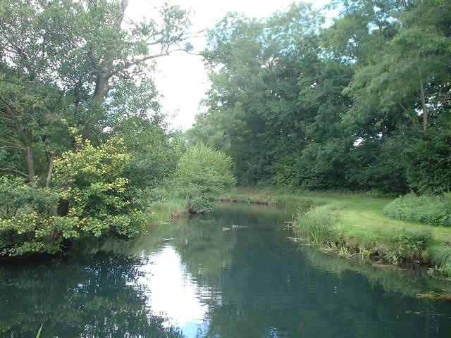 River Dun, near Dunbridge, Hampshire