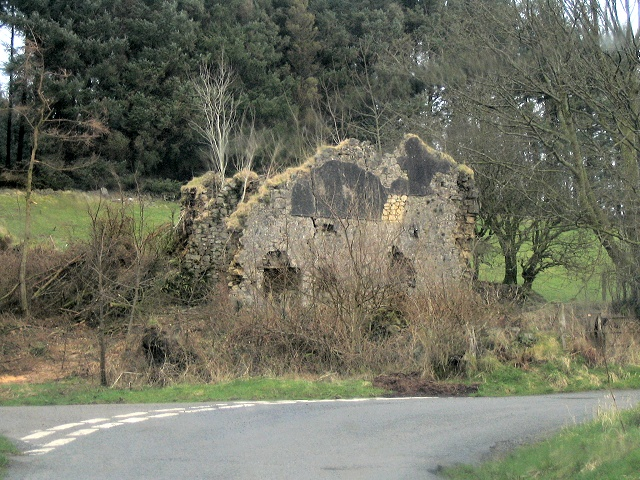 Ruin on junction in Taliaris Forest