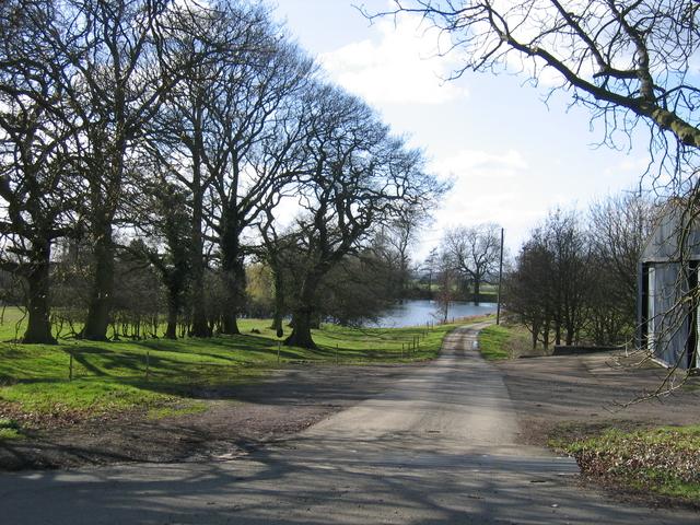 Driveway to Stoneton Manor