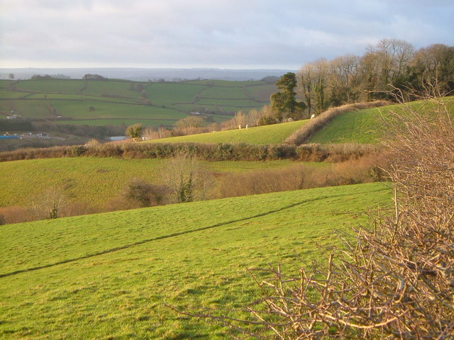 Place Wood from near Brownswell