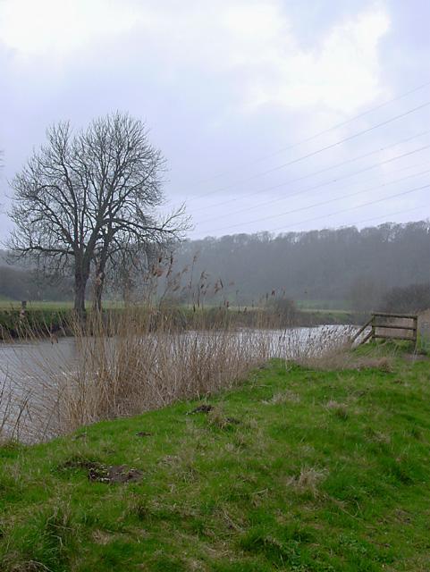 River Avon, Keynsham Hams