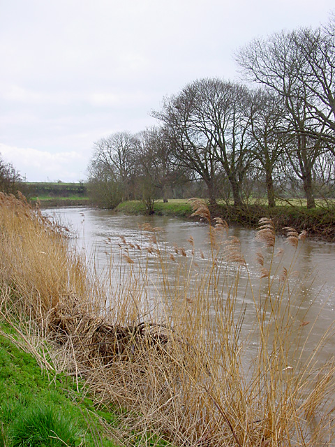 Looking upstream on the River Avon