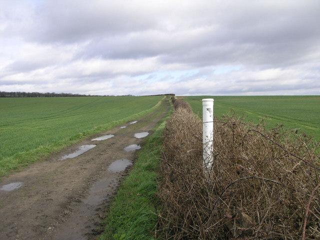 Bridleway to Firbeck