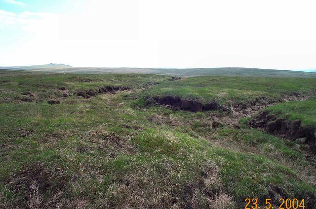 Peat hags on Dartmoor