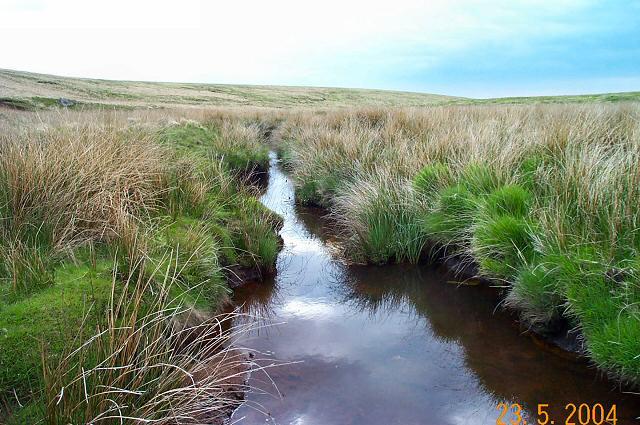 Upper Tavy - Dartmoor