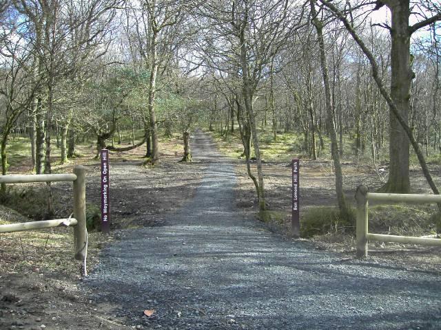 Start of the Ben Lomond 'Tourist' Path