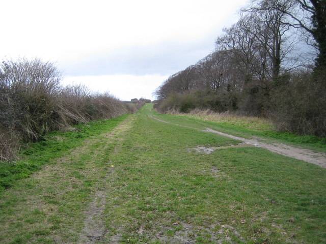 Dunstable: The Icknield Way Path
