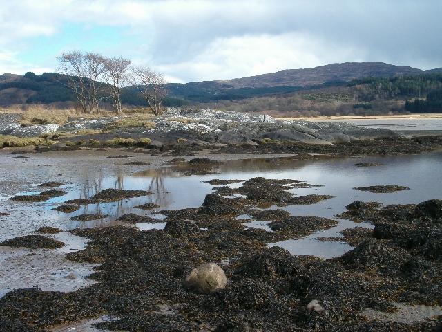 Low tide on Loch Caolisport