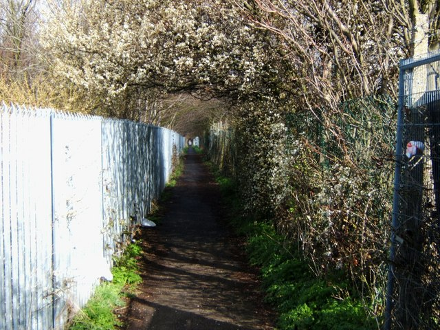 "Footpath to ""King's Farm"""