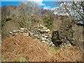 NR7576 : Ruins of St Columba's Chapel by Patrick Mackie