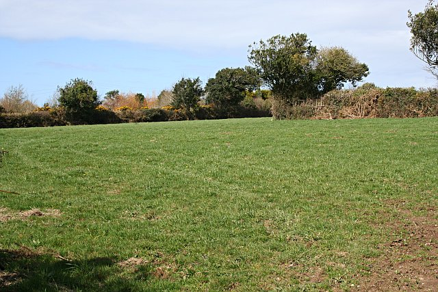 Pastureland near Sunny Corner