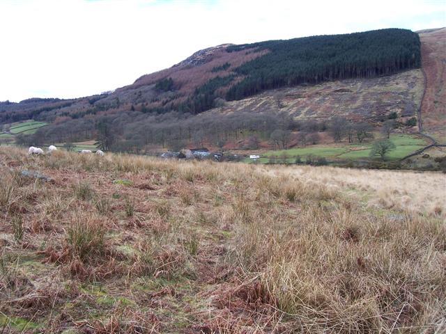 Low Place Farm.