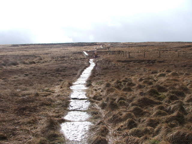 Footpath over Rocher Moss.