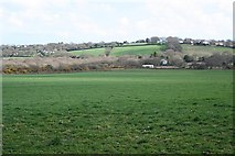 SW7440 : Pasture Land East of Gwennap by Tony Atkin