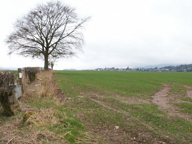 Field by Crieffvechter