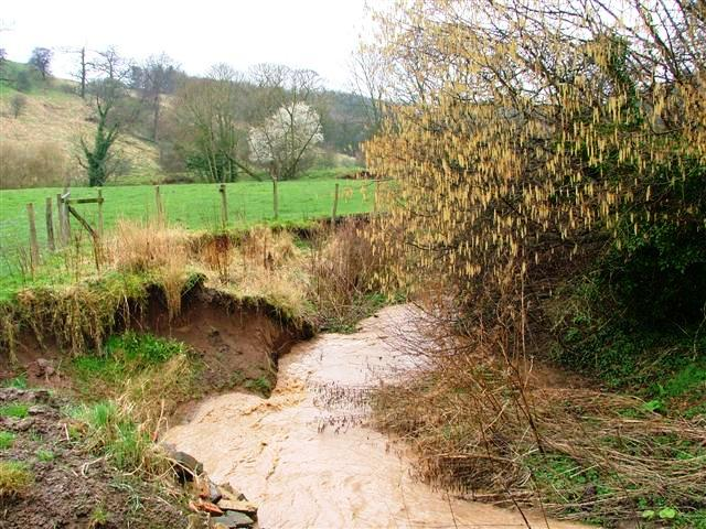 Brewsdale Beck