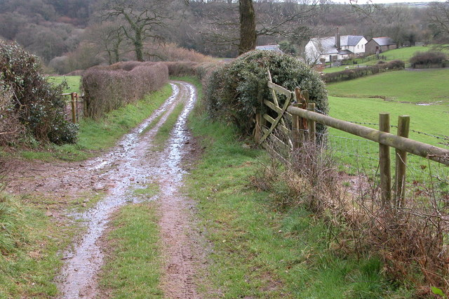 Cobley Oak, near Lapford