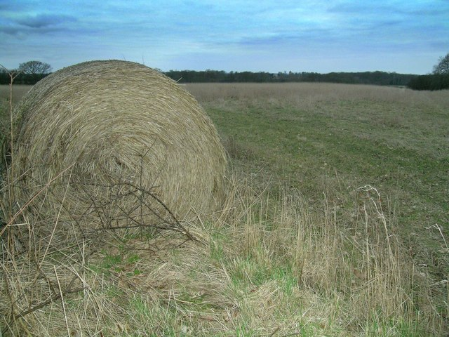 Lonely Hay Bale