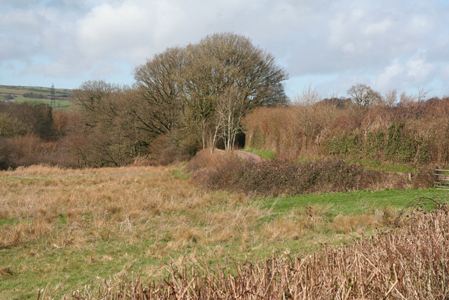 Stawley: Tone valley near Kittisford Mill