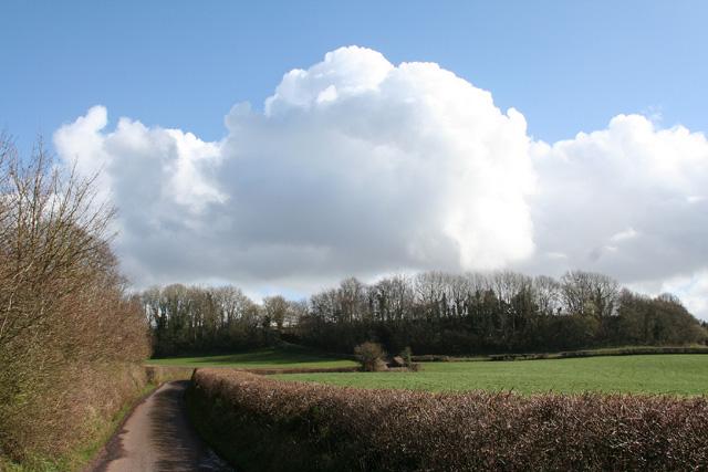 Thorne St Margaret: lane from Wellisford