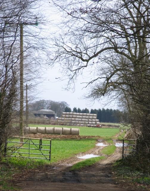 Bales and barns at The Grange Farm Exton