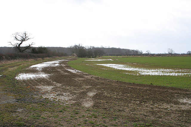 Waterlogged field near Wymondham