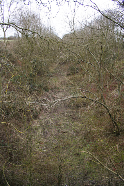 Old railway Cutting near Wymondham