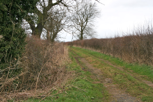 Farm Track near Wymondham