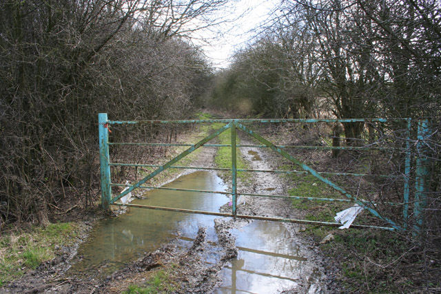 Farm Track near Wymondham