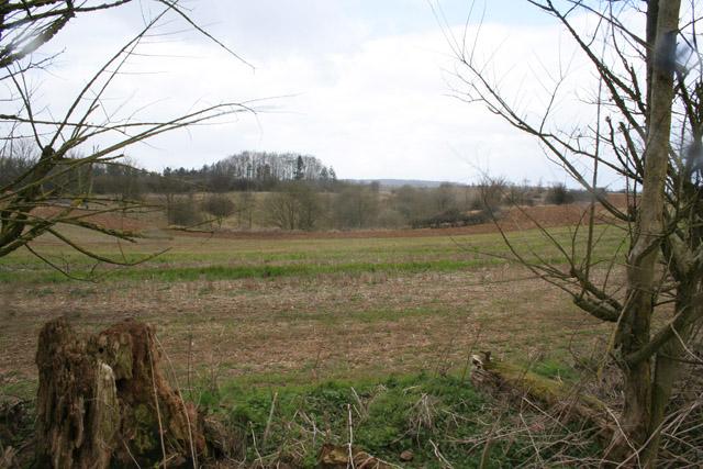 Countryside near Thistleton, Rutland