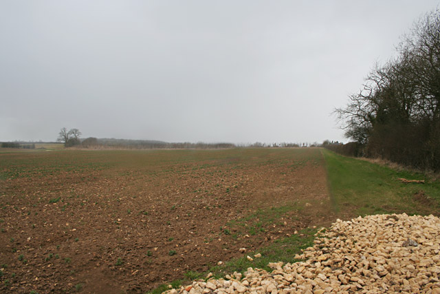 Farmland near Cottesmore