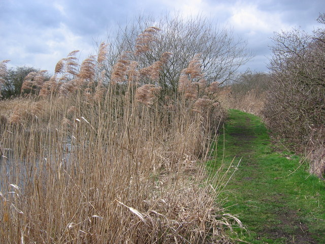 Leven Canal - Path West