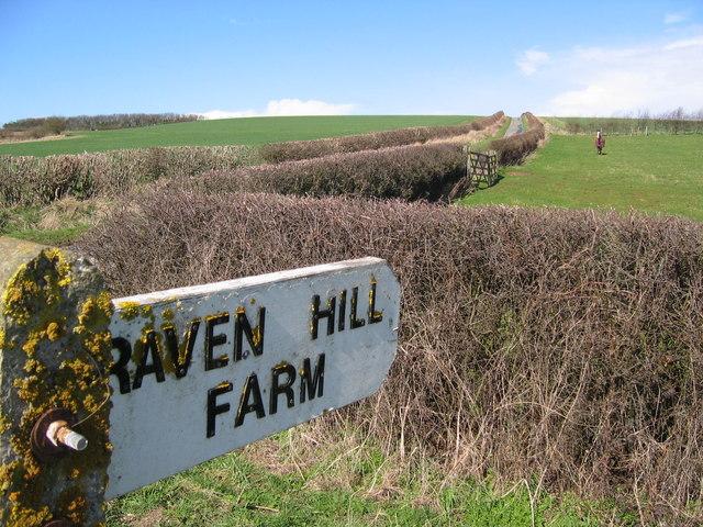 To Raven Hill Farm