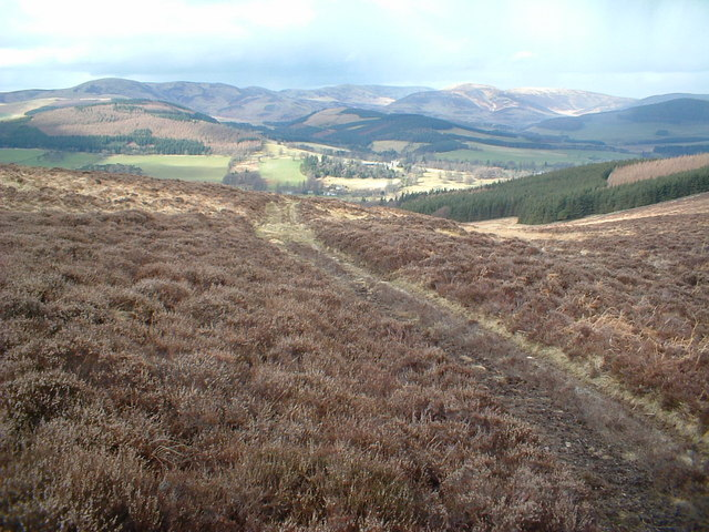 Path to Stobo, from Dead Wife's Grave