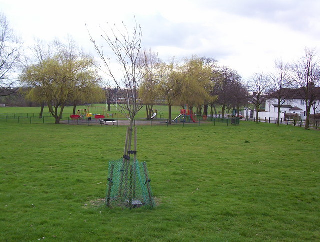 Silver Jubilee Park Playground