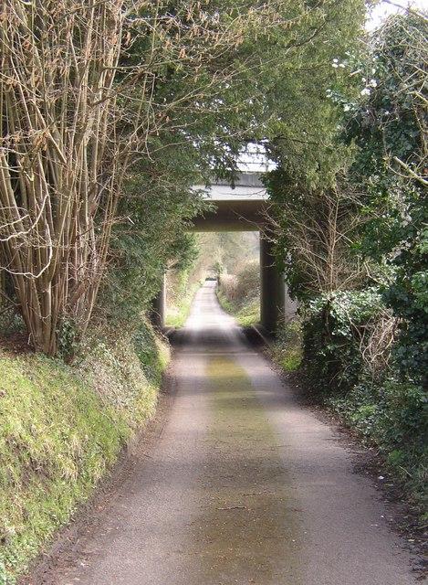 Bridleway at Hurtmore, Shackleford