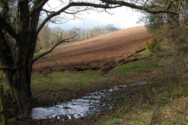 Ploughed field in the Hollocombe Water valley
